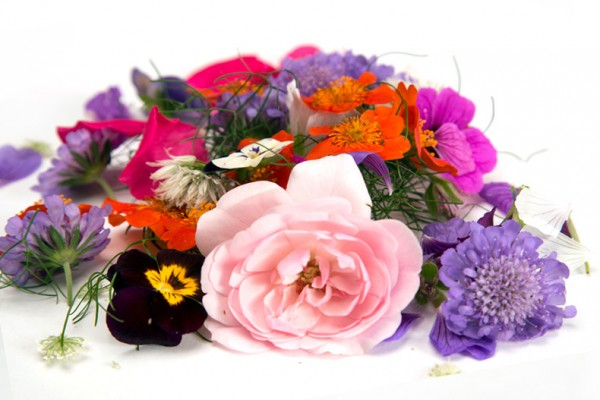 BIO Blütenmix